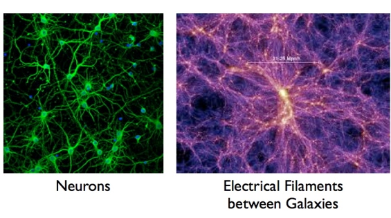 electrical filaments.008